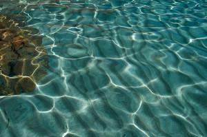 Água: um encanto. Foto Margi Moss